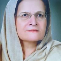 Meraj Hamayun Khan